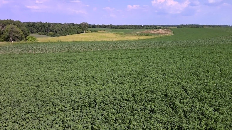 Land managed with crop rotation, contour strips and grazed pasture